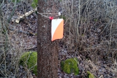 Sign of one of Sweden\'s favourite sports - Orienteering