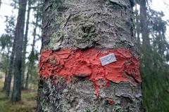Sörmlandsleden Trail markers