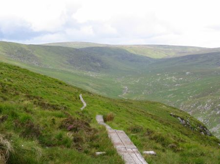 Boardwalk-above-Glendalough